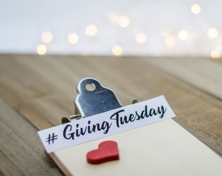 Giving Tuesday: 5 Questions to Ask Before Donating